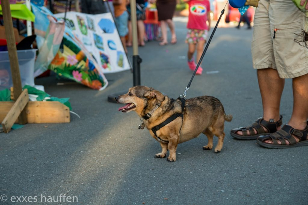 132 - Talmadge Block Party 2016-132 (Large).jpg